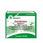Gambatex