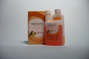 Pantochol plus B12 250 ml CB